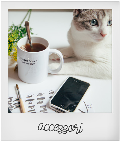 Accessori e gadget G come Gatto