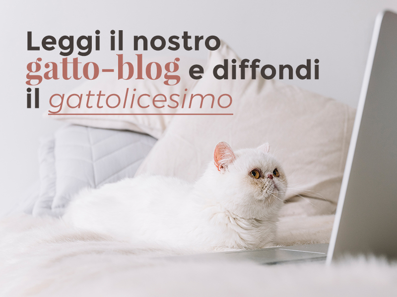 G come Gatto - regali miciosi