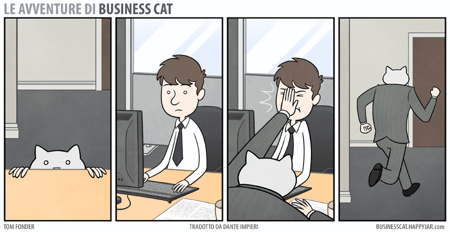 business cat #2