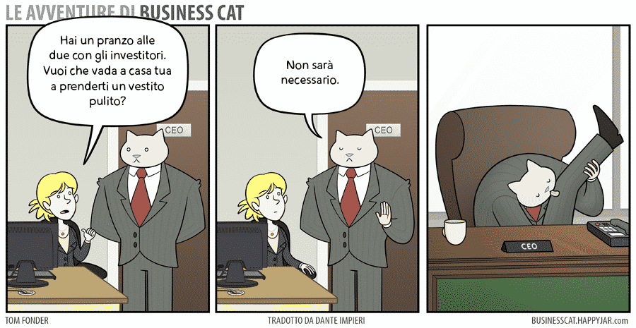 business cat #5