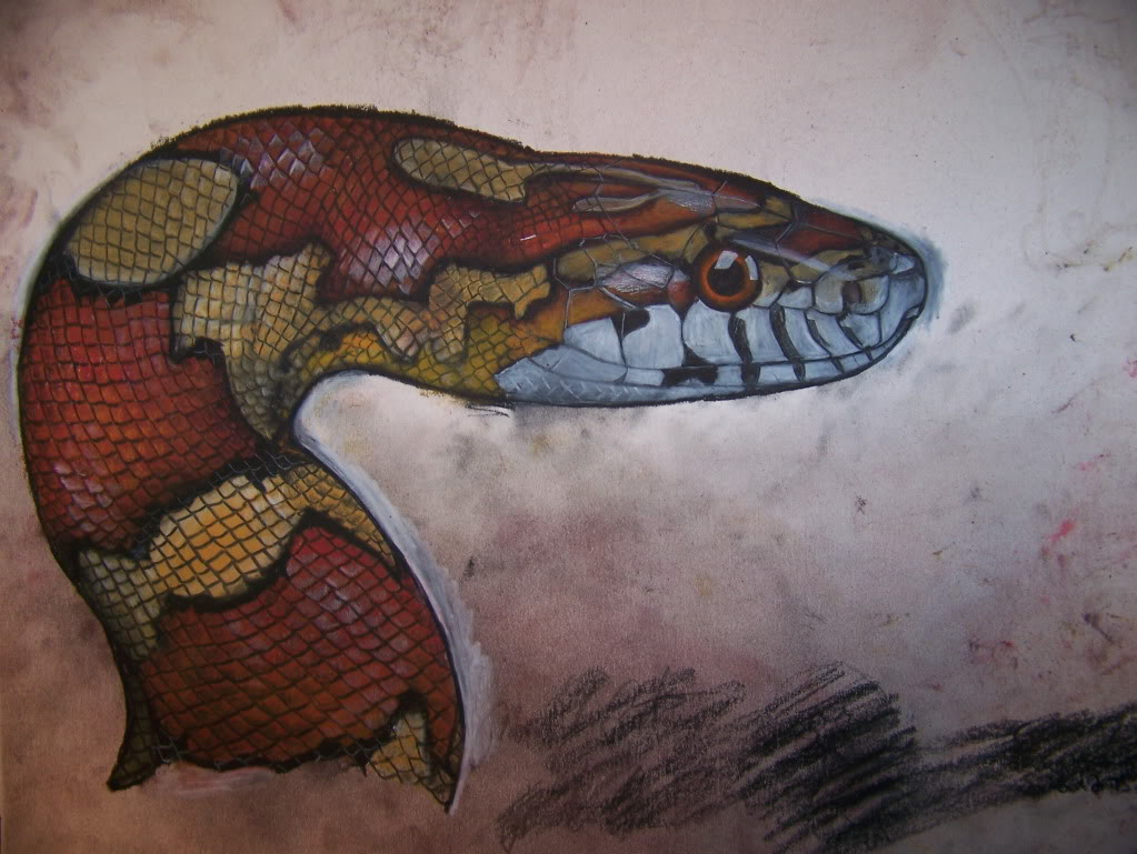 Realistic cobra drawing